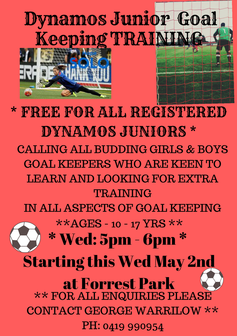 Dynamos Goal Keeping training